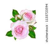 flower composition. a bouquet... | Shutterstock . vector #1133723594