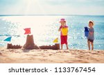 boy and girl playing on the... | Shutterstock . vector #1133767454