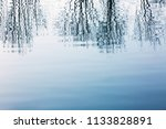 bare branges reflection in the... | Shutterstock . vector #1133828891