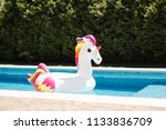 inflatable pool toy   giant...   Shutterstock . vector #1133836709