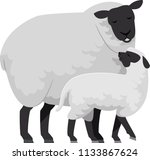 illustration of a sheep mother...   Shutterstock .eps vector #1133867624