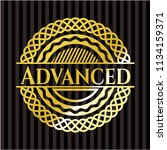 advanced gold shiny emblem | Shutterstock .eps vector #1134159371