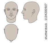 hand drawn human head in face ... | Shutterstock .eps vector #1134200507