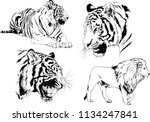 set of vector drawings on the... | Shutterstock .eps vector #1134247841