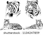 set of vector drawings on the... | Shutterstock .eps vector #1134247859