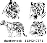 set of vector drawings on the... | Shutterstock .eps vector #1134247871