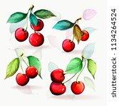 cherry illustration. set of... | Shutterstock .eps vector #1134264524