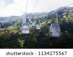 rainforest cableway above | Shutterstock . vector #1134275567