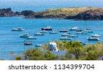 costa brava  catalonia  14 june ... | Shutterstock . vector #1134399704
