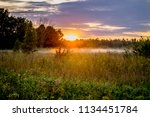 green wild meadow with fog and... | Shutterstock . vector #1134451784
