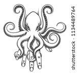 octopus baby sitting on human... | Shutterstock .eps vector #1134489764