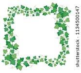 vine ivy green leaves frame.... | Shutterstock .eps vector #1134500147