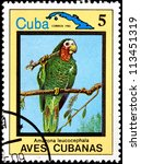 Small photo of CUBA - CIRCA 1983:A Postage Stamp Shows Amazona Leucocephala, from Series Cuban Birds, circa 1983