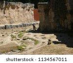 big goat in dutch zoo | Shutterstock . vector #1134567011