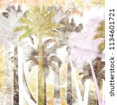 tropical palm grunge background ...   Shutterstock . vector #1134601721