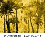 tropical palm grunge background ...   Shutterstock . vector #1134601745