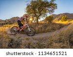 tuscon  usa   may 22  2012 ... | Shutterstock . vector #1134651521