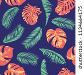summer exotic floral tropical... | Shutterstock .eps vector #1134664175