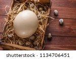 big ostrich egg on straw... | Shutterstock . vector #1134706451