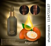 argan oil for hair care. vector | Shutterstock .eps vector #1134723137