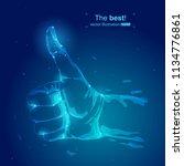 vector illustration of gesture...   Shutterstock .eps vector #1134776861