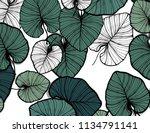 jungle pattern  hand drawn... | Shutterstock .eps vector #1134791141