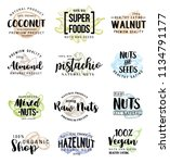 nuts and beans names lettering... | Shutterstock .eps vector #1134791177