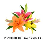 beautiful lily bouquet isolated ... | Shutterstock . vector #1134830351