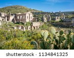 landscape of cactus and ruins...   Shutterstock . vector #1134841325