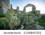 cactus and ruins at sunset in...   Shutterstock . vector #1134841331
