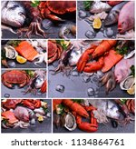 the freshest seafood from... | Shutterstock . vector #1134864761