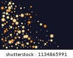 colorful stars confetti. vector ... | Shutterstock .eps vector #1134865991