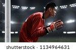 soccer goalkeeper ready to... | Shutterstock . vector #1134964631