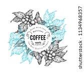 coffee tree vector illustration.... | Shutterstock .eps vector #1134968357
