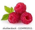 fresh raspberry isolated on... | Shutterstock . vector #1134981011