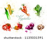 watercolor vegetables set... | Shutterstock .eps vector #1135031591