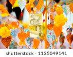 money tree for good luck... | Shutterstock . vector #1135049141