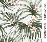 tropical vintage flower... | Shutterstock .eps vector #1135064051
