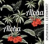 tropical hawaiian vintage palm... | Shutterstock .eps vector #1135064057