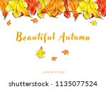 top row of frame with...   Shutterstock . vector #1135077524