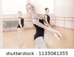 portrait of a young ballerina... | Shutterstock . vector #1135081355