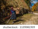 ramet  romania   october 19 ...   Shutterstock . vector #1135081505