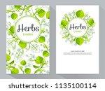 herbs linden vertical banners ... | Shutterstock .eps vector #1135100114