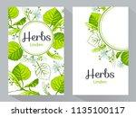 herbs linden vertical banners ... | Shutterstock .eps vector #1135100117