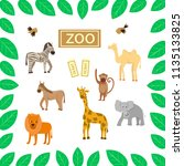 zoo  animals on a white... | Shutterstock .eps vector #1135133825