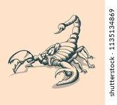 vintage scorpion drawing.... | Shutterstock .eps vector #1135134869