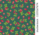 fruit seamless pattern with... | Shutterstock .eps vector #1135167674