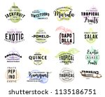 fruits of exotic origin icons ... | Shutterstock .eps vector #1135186751