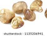 an expired of brown organic... | Shutterstock . vector #1135206941