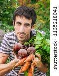 organic home vegetables carrots ... | Shutterstock . vector #1135218041